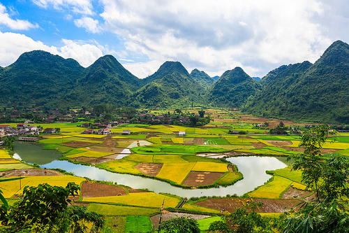 Bac Son valley, 6 breathtaking fields in Northern Vietnam