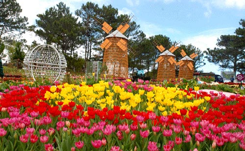 Da Lat – the city of flowers