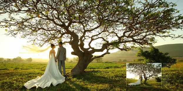 romatic wedding in Da lat