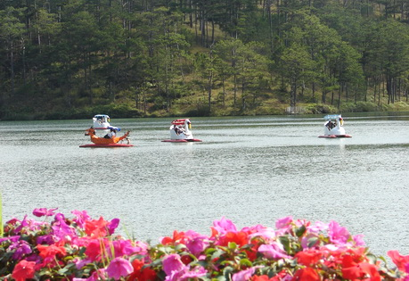 """Visiting Da Lat in August to join """"Rain in mountain city"""" Festival"""