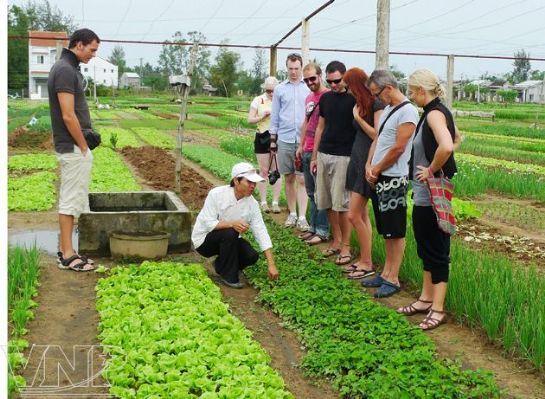 """Visiting the first """"Green Fair"""" in Tra Que village (Hoi An, Quang Nam Province)"""